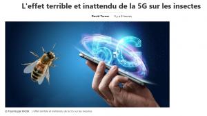 L'effet terrible et inattendu de la 5G sur les insectes