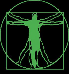 L'Homme de Vitruve en vert