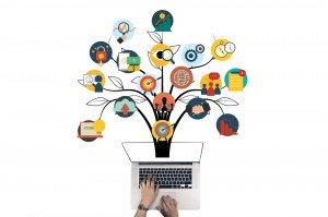 Les activités du Web