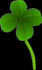 Le trèfle à 4 feuilles